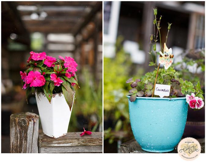 the Herb Garden Almonte Photo