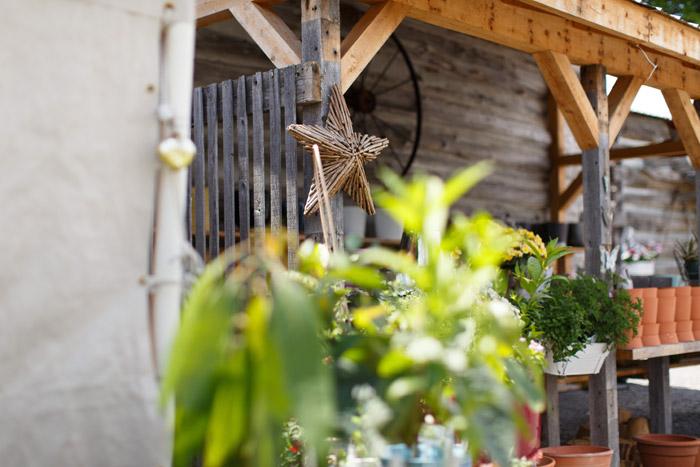 herb garden wedding venue ottawa