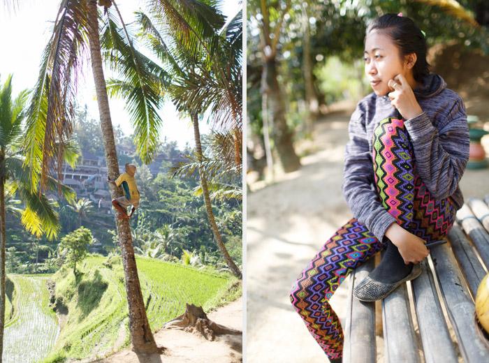 Tegalalang Rice Field bali indonesia